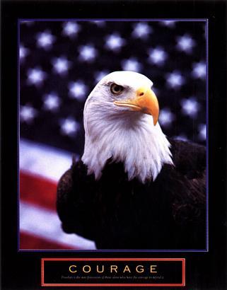 Eagle & Flag Courage